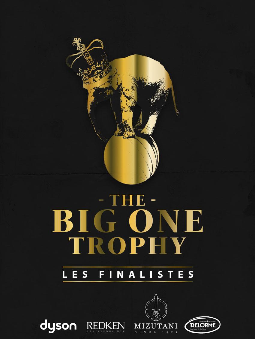 affiche-big-one-2019-FINALISTES